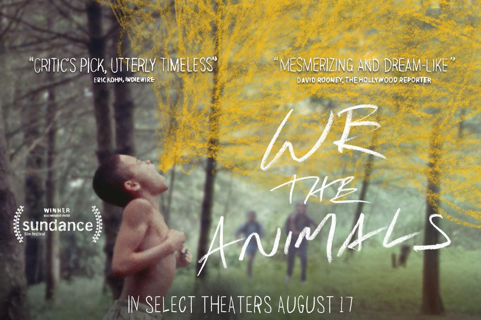 We-The-Animals-movie-1.jpg